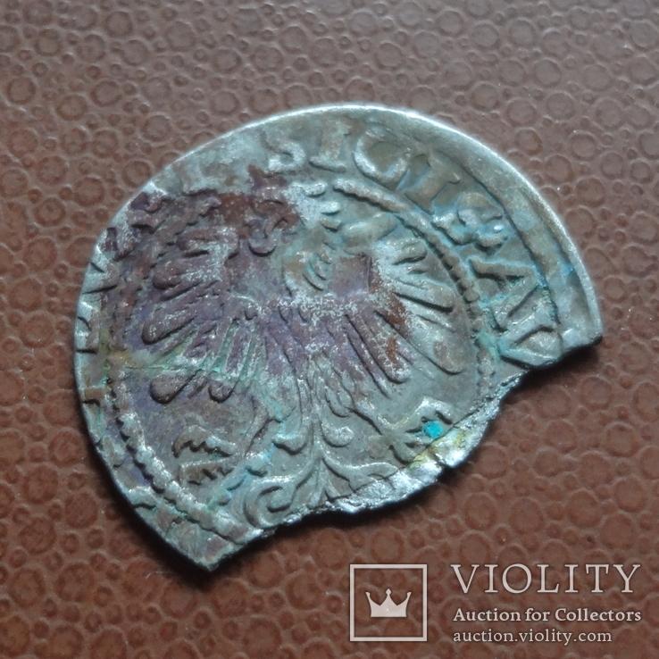 Полугрош  1519  серебро  (М.5.33)~, фото №5