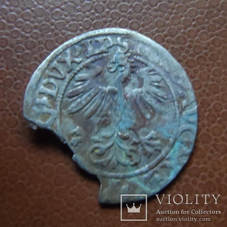 Полугрош 1560   серебро   (М.4.2)~, фото №3
