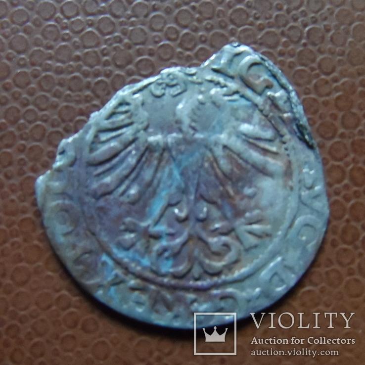 Полугрош 1565   серебро   (М.4.14)~, фото №4