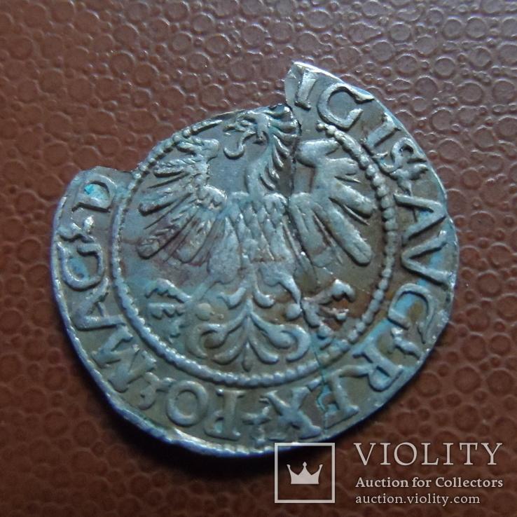 Полугрош  1560   серебро   (М.4.63), фото №5