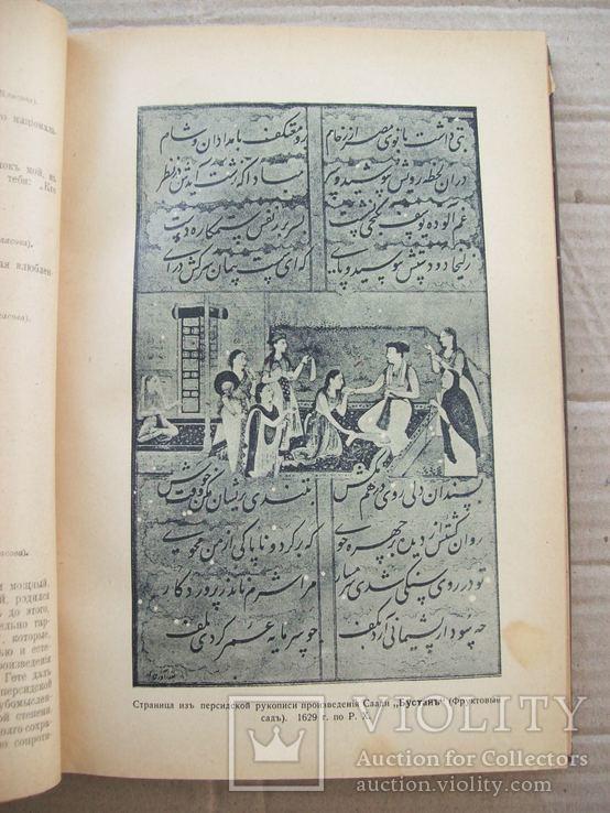 История древней литературы 1900 гг., фото №7