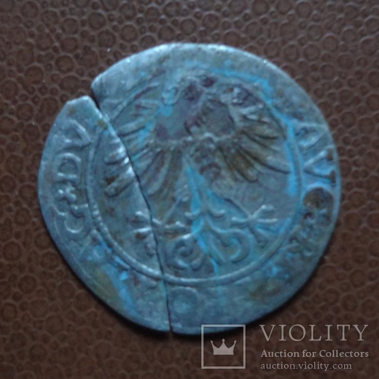 Полугрош  1561   серебро (М.3.50)~, фото №4