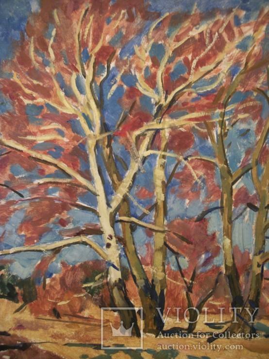 24 Картина. Осенний пейзаж. Картон, масло или гуашь, ДВП. Размер 49*39 см