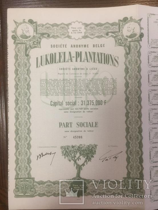 Компанія луколела плантація, Колоніальна Бельгія, пай, 1944