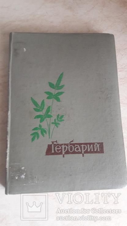 Гербарий альбом, фото №2
