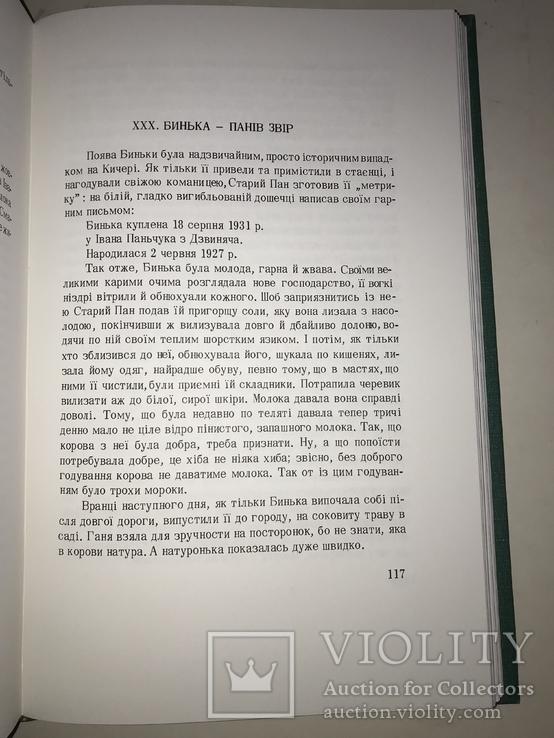 1974 Попід Кисерами та над потоком Українська Бібліотека, фото №8