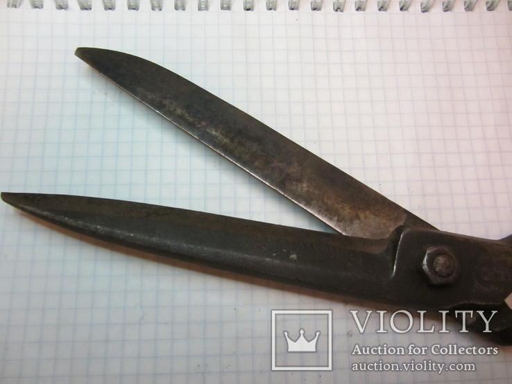 Старинные большие ножницы Германия, фото №11