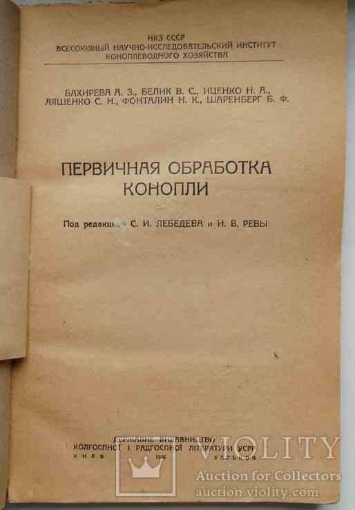 Первичная обработка конопли. 1936, фото №3