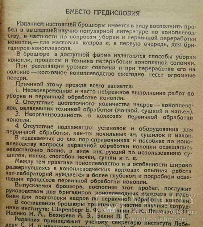 Первичная обработка конопли. 1936, фото №4