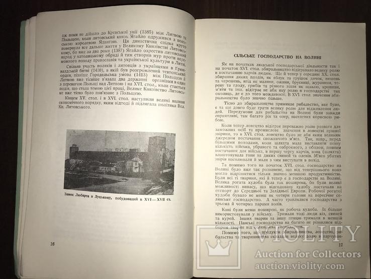 Аграрна реформа на Волині в 16 столітті, фото №6