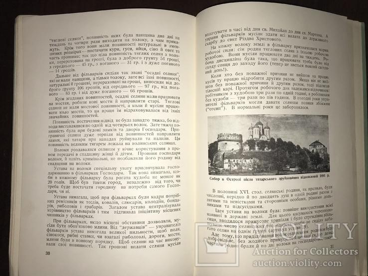 Аграрна реформа на Волині в 16 столітті, фото №10