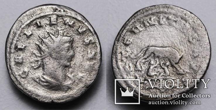 Галлієн, срібний антонініан, 264-265 р. - Капітолійська вовчиця