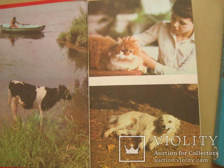 Домашние животные в 2-х томах, фото №5