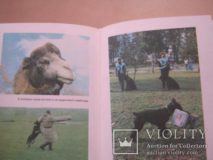 Домашние животные в 2-х томах, фото №8