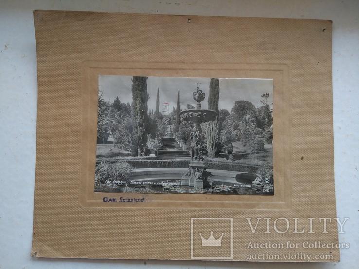 Набор из 4шт. фото с паспарту Сочи, фото №4