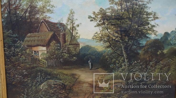 Сельский пейзаж., фото №4