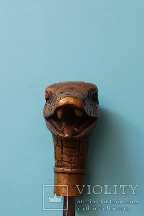 """Змей"" рукоять для трости, бронза, фото №4"