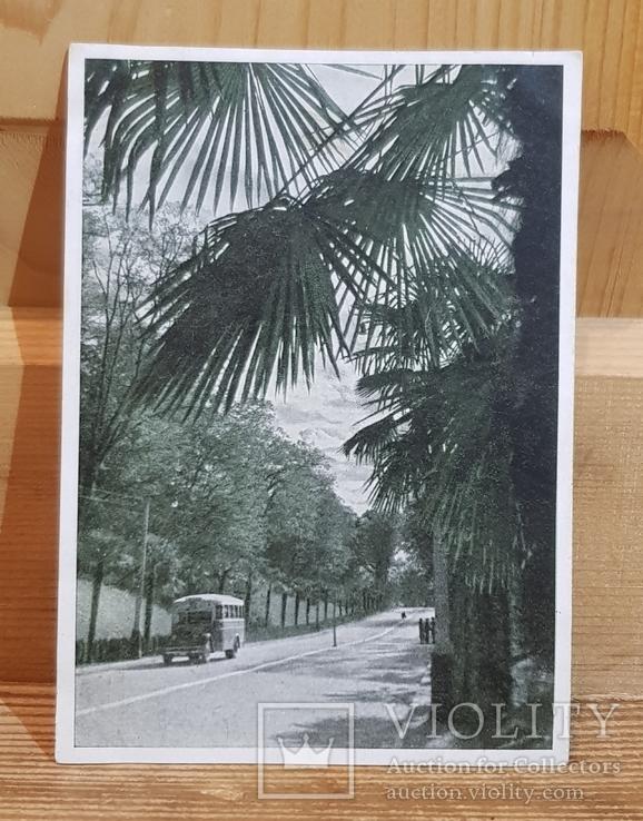 Автотрасса Сочи-Мацеста. Фотоэтюд И. Шагина, 1946 г. Тираж 100 тис.