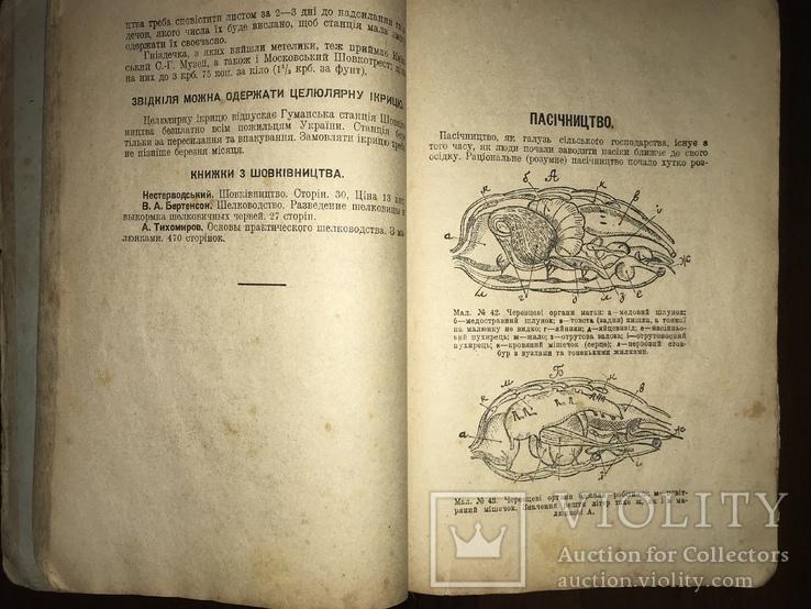 1928 Пасіка Хміль Тютюн Поради українському селянинові, фото №4