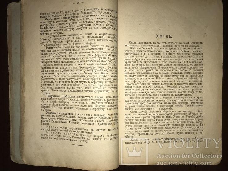 1928 Пасіка Хміль Тютюн Поради українському селянинові, фото №6
