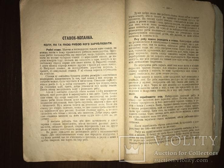 1928 Пасіка Хміль Тютюн Поради українському селянинові, фото №7