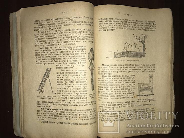 1928 Пасіка Хміль Тютюн Поради українському селянинові, фото №9
