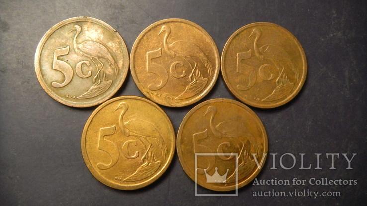 5 центів Південна Африка (порічниця) 5шт, всі різні, фото №3