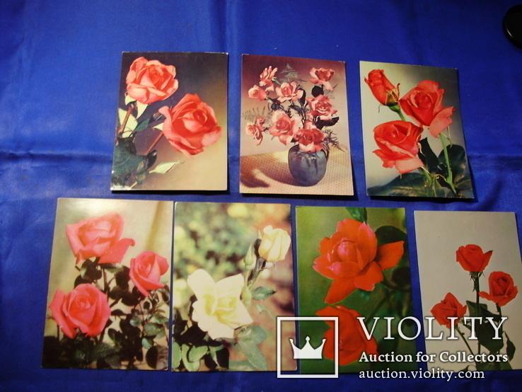 Открытки Розы Вьетнам Болгария Братислава Лейпциг 7 шт, фото №3