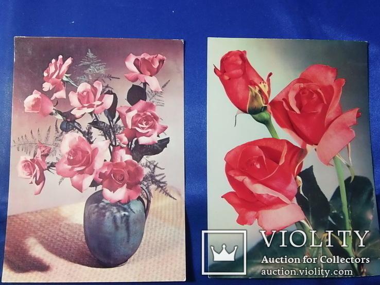 Открытки Розы Вьетнам Болгария Братислава Лейпциг 7 шт, фото №11