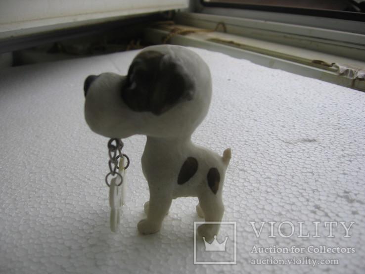 Собака 1, фото №4
