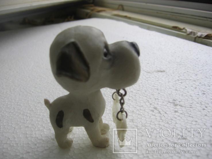 Собака 1, фото №6