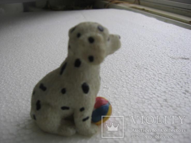 Собака 2, фото №4
