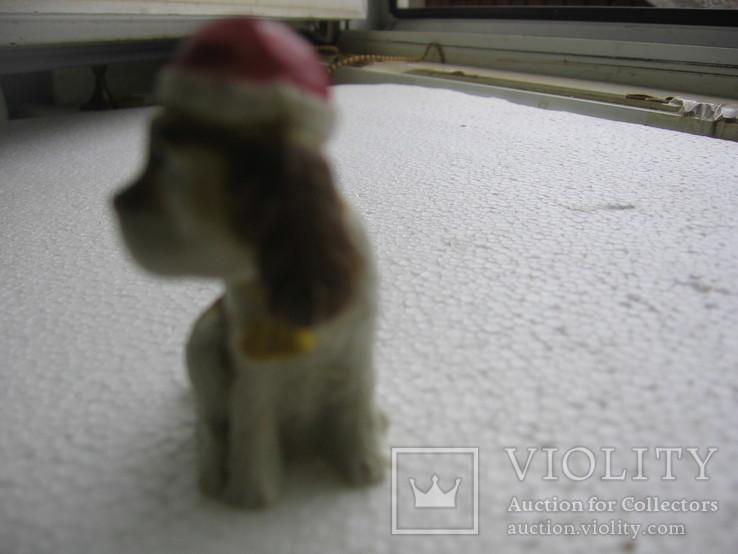 Собака 3, фото №4