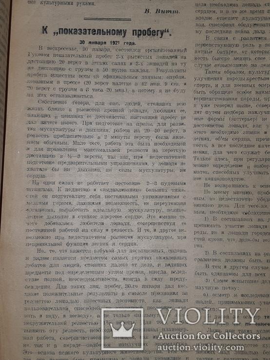 1921 Вестник коневодства, фото №4