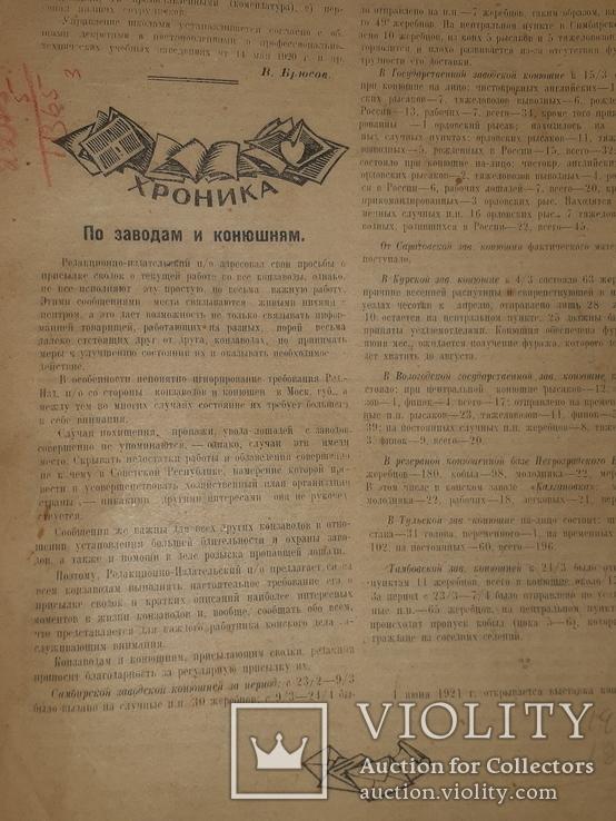 1921 Вестник коневодства, фото №7