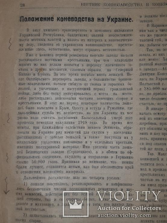 1921 Вестник коневодства, фото №9