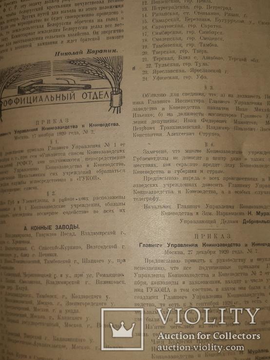 1921 Вестник коневодства, фото №10
