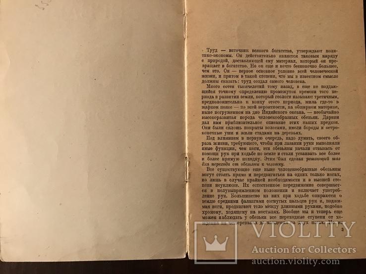 1946 Энгельс Роль труда в превращении обезьяны в человека, фото №3