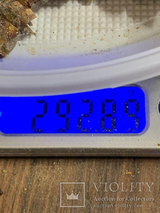 5  бус из янтаря общим весом 292 грамм(2), фото №4