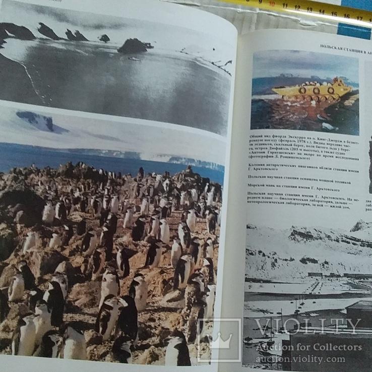 Наука и человечество (международный ежегодник) 1981р., фото №11