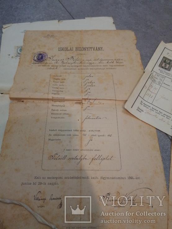 Дипломы + аттестаты + свидетельства 1880-1940гг, фото №4
