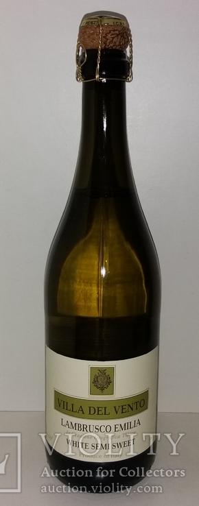 Вино игристое фризанте Lambrusco Emilia IGT, Италия, фото №2