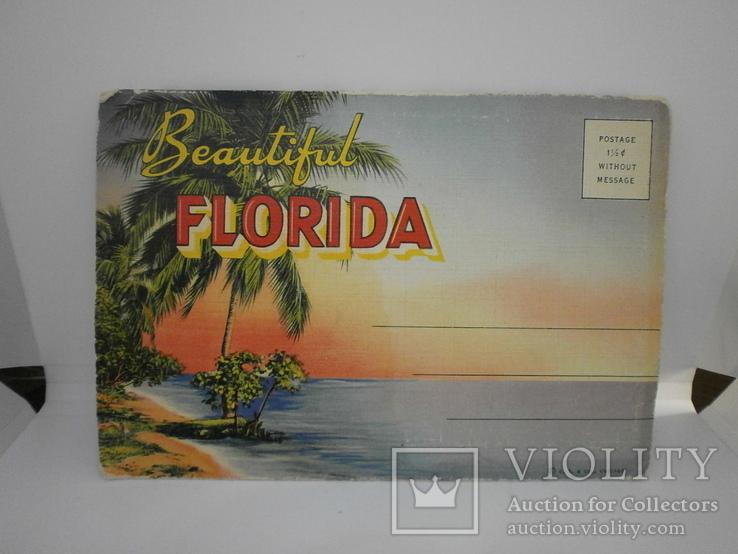 Набор с 18 видами США Флорида. Виды, природа, транспорт