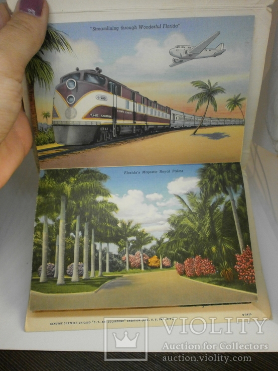 Набор с 18 видами США Флорида. Виды, природа, транспорт, фото №6