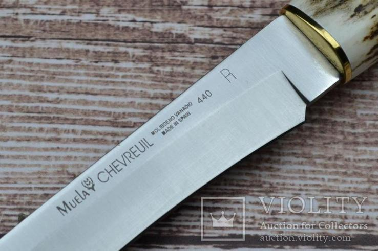 Нож Muela Chevreuil *Погоня*, фото №4