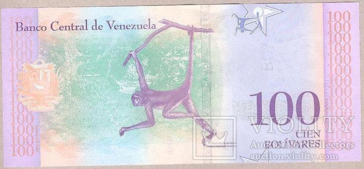 Банкнота Венесуэлы 100 боливар 2018 г. UNC, фото №3