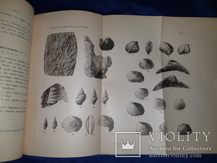 1899-1901 Записки минералогического общества, фото №3