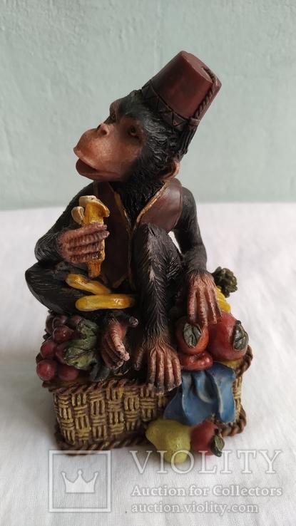 Скарбничка Мавпа, фото №4
