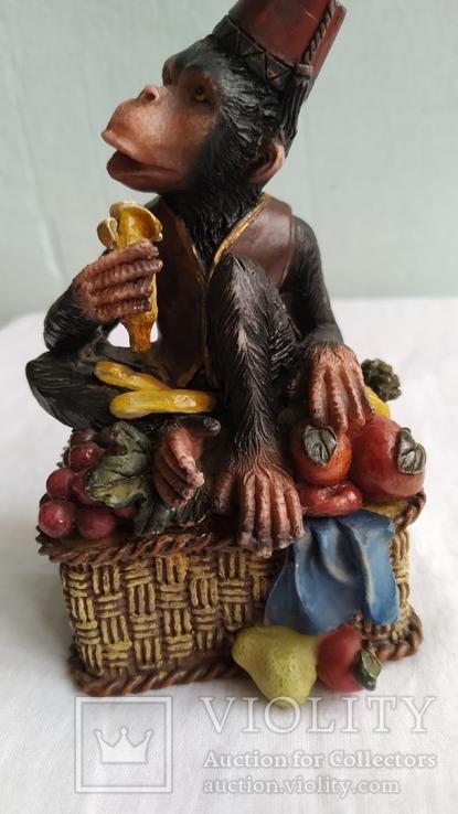 Скарбничка Мавпа, фото №10