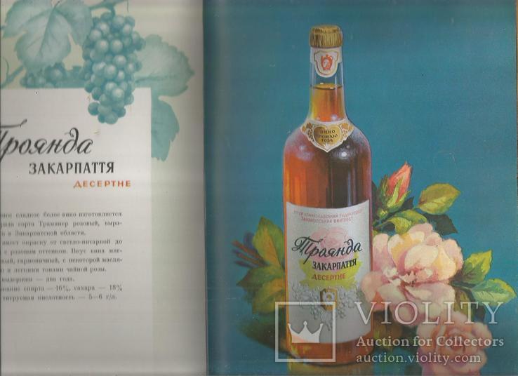 Каталог 1954 Украинские вина и коньяки Совмин Внешторгиздат, фото №7